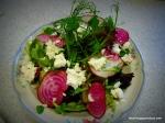 Beet, goat cheese, and Pea Shoot Salad