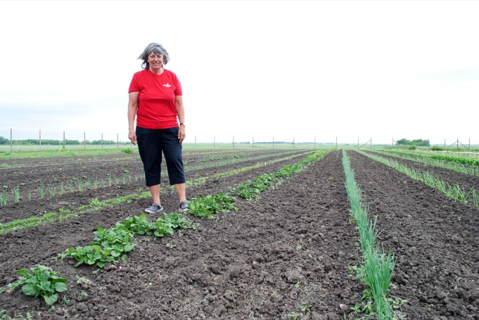 Brown Sugar Produce founder Stephanie Dillon is seen at her property's expansive garden, a few minutes northeast of Brandon, whose produce meets only a small portion of public demand. (Tyler Clarke/The Brandon Sun)